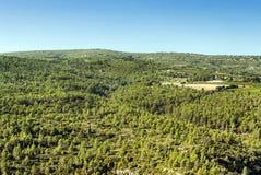 Floresta de Lagrasse Imagens de Stock Royalty Free
