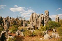 Floresta de pedra imagens de stock