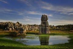 Floresta de pedra Fotos de Stock Royalty Free