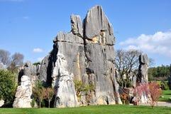 Floresta de pedra Fotografia de Stock