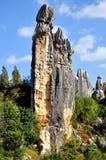 Floresta de pedra Fotografia de Stock Royalty Free