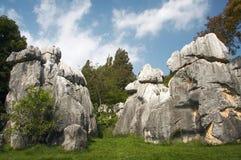 Floresta de pedra Imagem de Stock Royalty Free