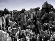 Floresta de pedra Foto de Stock