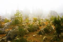 Floresta de pedra, Yunnan, China Fotografia de Stock Royalty Free
