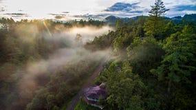 Floresta de Puebla Imagens de Stock Royalty Free