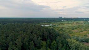 floresta decíduo do acercamento aéreo da metragem do zangão 4K vídeos de arquivo