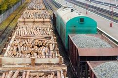 Floresta do ambiente, da natureza e do desflorestamento - felling das árvores O conceito de um problema global Trem de mercadoria Imagem de Stock Royalty Free