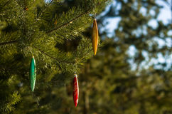 Floresta do conto do inverno Imagens de Stock