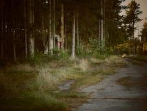 Floresta do depósito Imagem de Stock Royalty Free