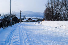 Floresta do inverno com neve Imagens de Stock Royalty Free