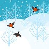 Floresta do inverno do vetor Fotografia de Stock