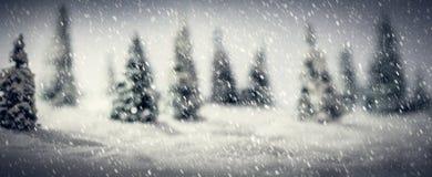 Floresta do inverno feita de árvores diminutas do brinquedo Foco no primeiro plano da neve fotografia de stock royalty free