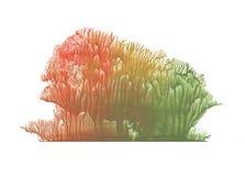 Floresta do outono, árvores em estações diferentes, pintura do desenho da abstração foto de stock royalty free