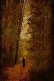 Floresta do outono com homem imagem de stock royalty free