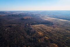 Floresta do outono com uma estrada Tiro da alta altitude de um zangão fotos de stock royalty free