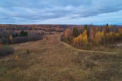 Floresta do outono com uma estrada Tiro da alta altitude de um zangão foto de stock royalty free