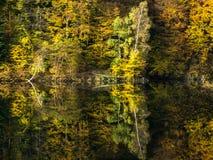 Floresta do outono na borda de um lago Fotos de Stock Royalty Free