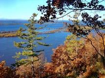 Floresta do outono nas costas do Lago Baikal Outono dourado Verão indiano fotografia de stock royalty free