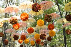 Floresta do outono, parque, rua, onde muitos guarda-chuvas com cair amarelo e alaranjado das folhas paire contra o céu e a folha  fotos de stock royalty free