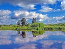 A floresta do outono refletiu em um lago da floresta Outono dourado Reflexão do céu na água Os últimos dias mornos do outono Verã imagem de stock