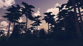 Floresta do pinho na noite Imagem de Stock