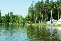 Floresta do pinho pela água fotos de stock