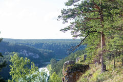 Floresta do rio da rocha, horizonte Fotografia de Stock Royalty Free