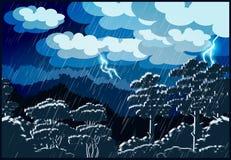 Floresta do temporal Imagem de Stock Royalty Free