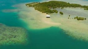 Floresta dos manguezais em um recife de corais Filipinas, Palawan filme