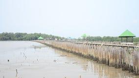 Floresta dos manguezais ou floresta Intertidal em Bangkhunthein em Banguecoque Tailândia video estoque