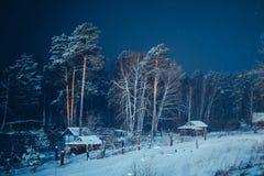 Floresta e casas de campo do inverno Fotografia de Stock