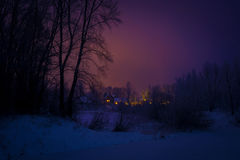 Floresta e casas de campo do inverno Fotos de Stock Royalty Free