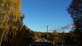 Floresta e estrada da queda Foto de Stock Royalty Free