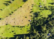 Floresta e jardim com pilhas do feno Imagem de Stock