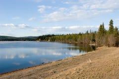 Floresta e lago Fotografia de Stock Royalty Free