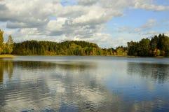 Floresta e lago Fotografia de Stock