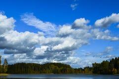Floresta e lago Imagens de Stock