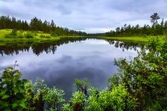 Floresta e lago bonitos em Rendalen Noruega Imagem de Stock