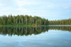 Floresta e lago com uma reflexão bonita Imagem de Stock