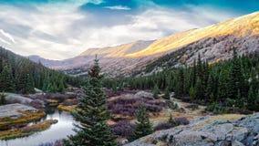 Floresta e lago coníferos Fotografia de Stock