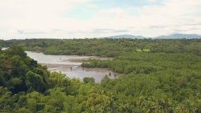 Floresta e lago tropicais da palma do tiro aéreo na paisagem da montanha na skyline Barcos e navios da opinião do zangão no fluxo filme