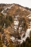 A floresta e a montanha de madeira do abeto ajardinam com neve Imagens de Stock Royalty Free