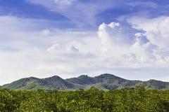 Floresta e montanha verdes com céu azul Imagens de Stock Royalty Free