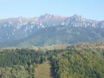 Floresta e montanhas de surpresa em um dia ensolarado fotografia de stock