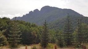 Floresta e montanhas do Chile do sul imagens de stock