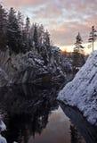 A floresta e o céu com nuvens refletiram na água Imagens de Stock