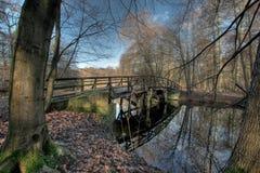 Floresta e ponte da cidade de Francoforte fotografia de stock royalty free