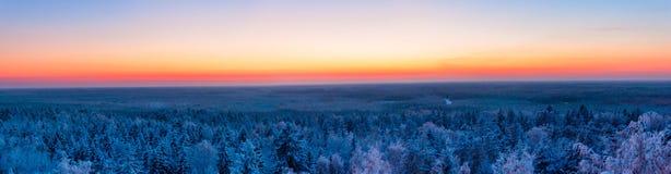 Floresta e por do sol do inverno vista panorâmica colorida Imagens de Stock Royalty Free