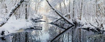 Floresta e rio Dreamlike na manhã do inverno Fotografia de Stock