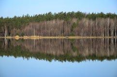 Floresta e sua reflexão no rio no dia de mola imagens de stock royalty free